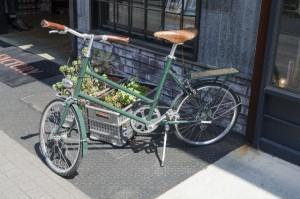 自動車保険 自転車特約